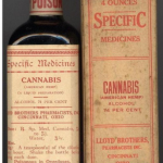 cannabis old
