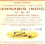 lilly cannabis